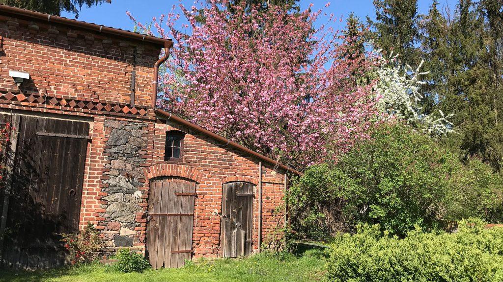 Gut Leben im Landresort Birkholz Scheune mit einem pinken Baum