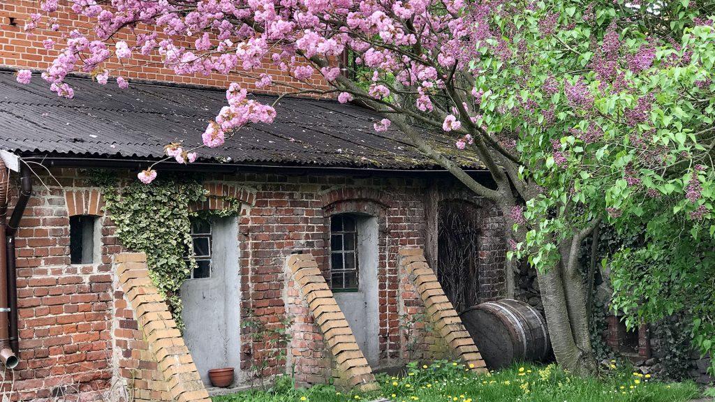 Gut Leben im Landresort Birkholz die Südscheune