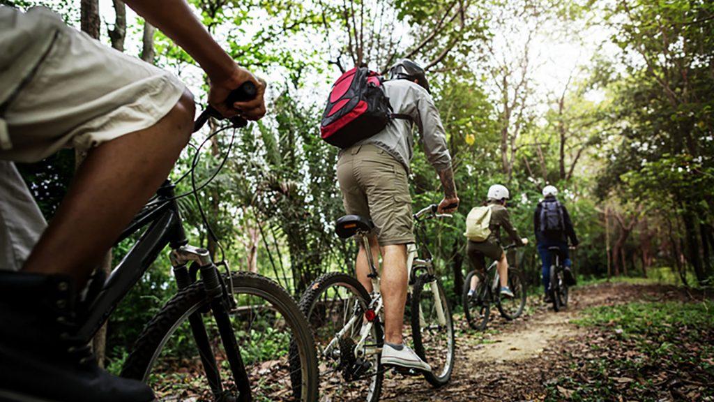 Gut Leben im Landresort Birkholz durch den Wald mit dem Rad fahren