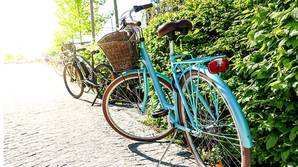 Gut Leben im Landresort Birkholz ein tükises vintage Rad steht neben einem Busch